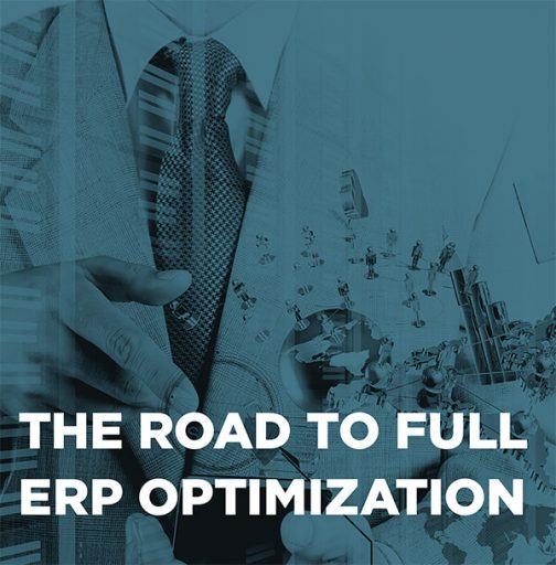 The Road to Full ERP Optimization